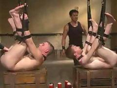 Gay BDSM Foursome Live Bit