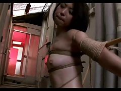 Japanese housewives training..