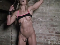 Claire - Nipple Clamps in be..