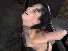 Demure slaves are clamped up..