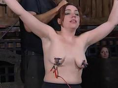 Titty torture be useful to..