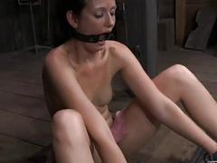 Fetching babe gets lusty..