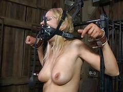 Torturing looker with sex toys