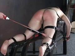 Cattleprod electro bdsm and..